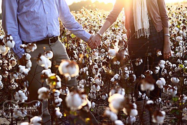 cotton field!!! @Nina Nelson