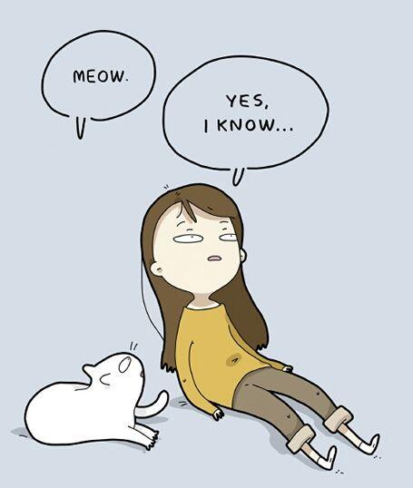 Ja, ich weiß...