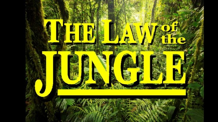 The Jungle Book - The Law of the Jungle - YouTube