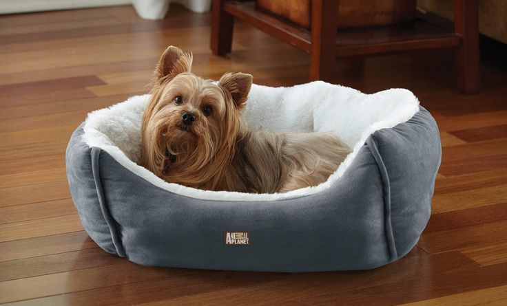 Groupon - $ 19.99 for an Animal Planet Ultra Suede Pet Bed ($ 39.99 List Price). Three Colors Available. Free Shipping and Returns.. Groupon deal price: $19.99