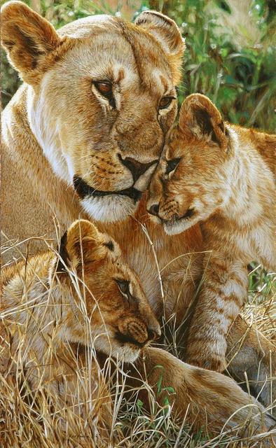 Time for a Cuddle by Tony Karpinski,