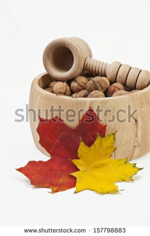 Composition of nuts on white background  by SirChopin, via ShutterStock