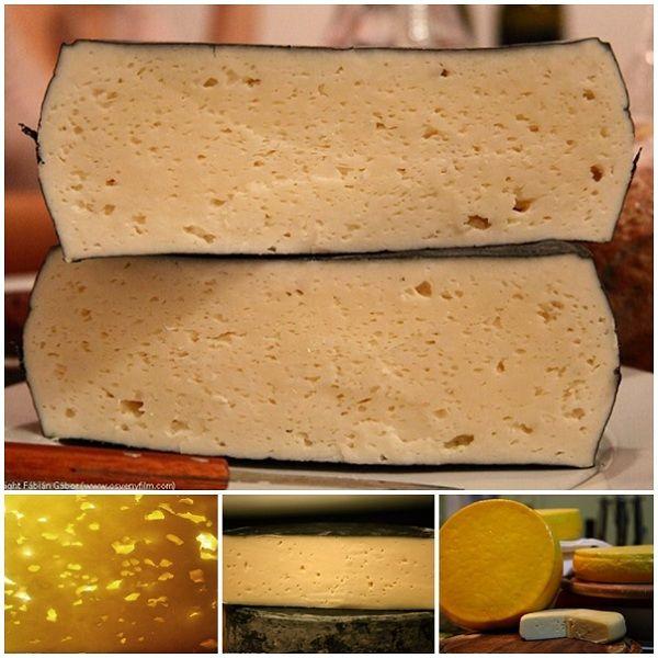 - A sajtkészítés csupán egy érdekes kihívás, egy hobbi számomra. Ez is egyfajta alkotás, lehet akár még művészetnek is nevezni. Van a tej, az oltó, a víz és a só. Ha bizonyos rendszerben összehozzuk ezen alkotóelemeket, egészen érdekes végeredményt kapunk. Ráadásul sohasem ugyanazt, mindig mást és mást. Érzékeny és megismételhetetlen folyamat. Függ a hőmérséklettől, a tej összetételétől és még sok titokzatos behatástól - mondja Fábián Gábor. Van a híg, folyékony közeg, maga a tej, ami…