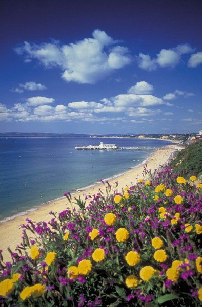 Bournemouth Beach and Pier, Dorset.  With seven miles of golden sands and sparkling sea, the vibrant cosmopolitan town of Bournemouth has it all.  The approximately estimated travel/road distance from Shaftesbury to Bournemouth is around 27.7 miles to 30.11 miles