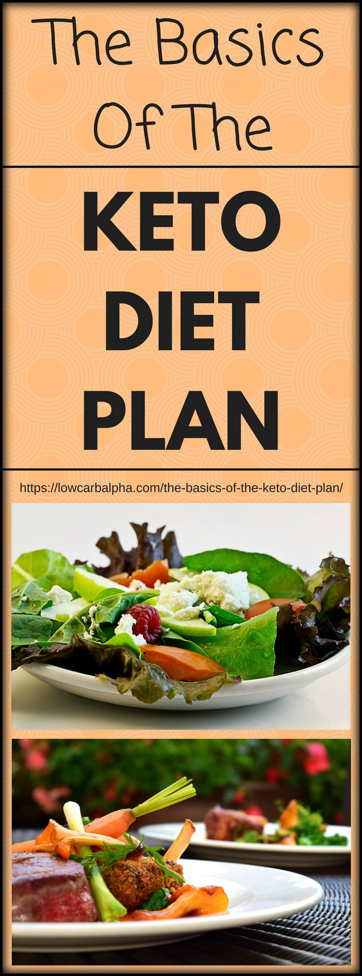 The Basics of the Keto Diet Plan https://lowcarbalpha.com/the-basics-of-the-keto-diet-plan/ The Ketogenic diet is a growing low carb high fat (LCHF) diet. Everybody nowadays is concerned about their health and which foods to eat. Worrying about keeping their bodies fit, strong, in shape, maintained and healthy. Burning ketones instead of glucose and following a high-fat ketogenic diet could be the answer #lowcarb #lowcarbdiet #ketogenicdiet #lowcarbhighfat #ketosis #fatloss