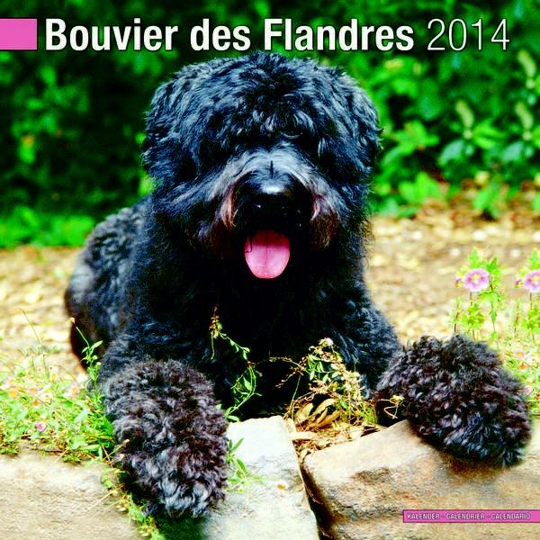 Bouvier Des Flandres US 2014 Calendar 10120 14 by Pet