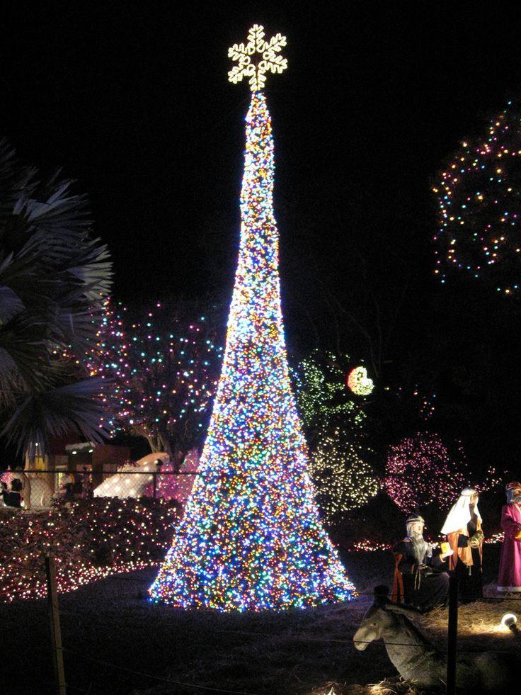 christmas lights on miami house lights camera christmas pinterest tr