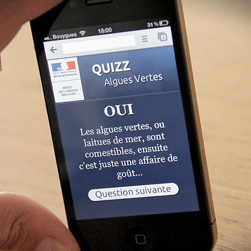 Préfecture de Bretagne // Quizz Algues vertes #WebDesign  #Développement #WebMobile #iPhone