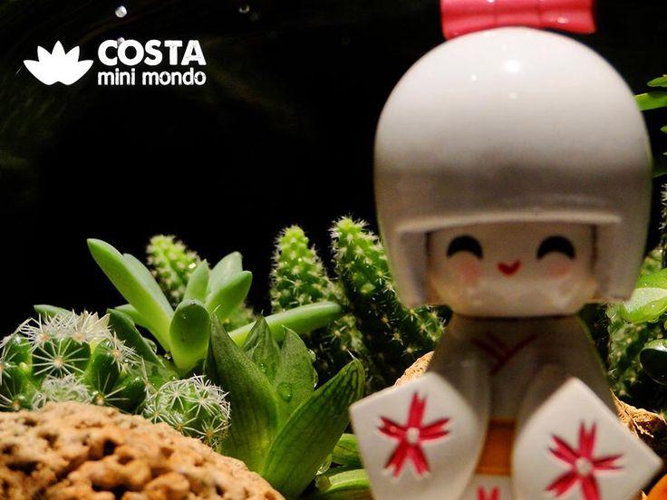 A little more of terrariums 😍 VISIT OUR PROFILE. FOLLOW US 😉 #terrario #terrarium #suculentas #succulents #cactos #cactus #ornamentos #ornaments #jardim #garden #eco #verde #green #mini #beleza #beauty #decoração #decoration #plantas #plants #arranjosflorais #moss #musgo #vase #vaso