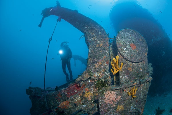 HMNZS Canterbury, Northland, New Zealand #diving