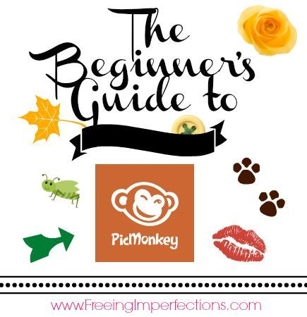 The Beginner's Guide to PicMonkey