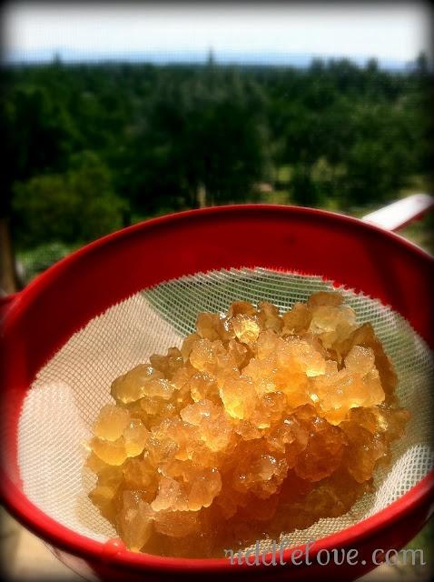 Water Kefir Riddle Love Water kefir, Healthy snacks