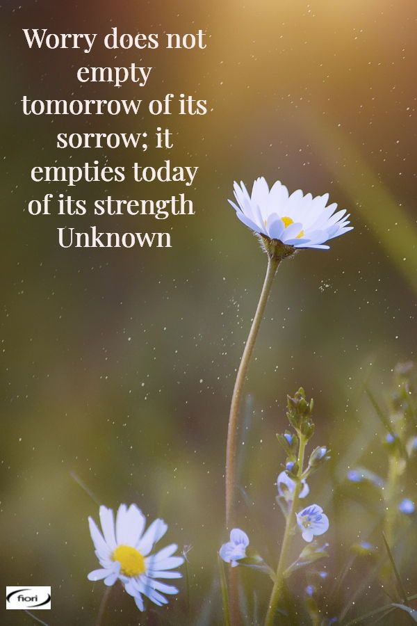 Fiori Quotes.Live For Today Www Fiori Com Au Aesthetic Words Quote Of The