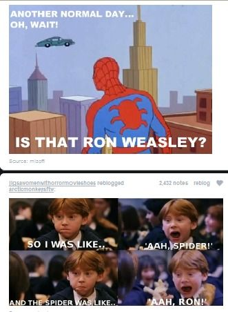 I just love harry potterGeek, Perfect Time, Ronweasley, Harrypotter, Spiderman, Spiders Man, Funny Stuff, Harry Potter, Ron Weasley