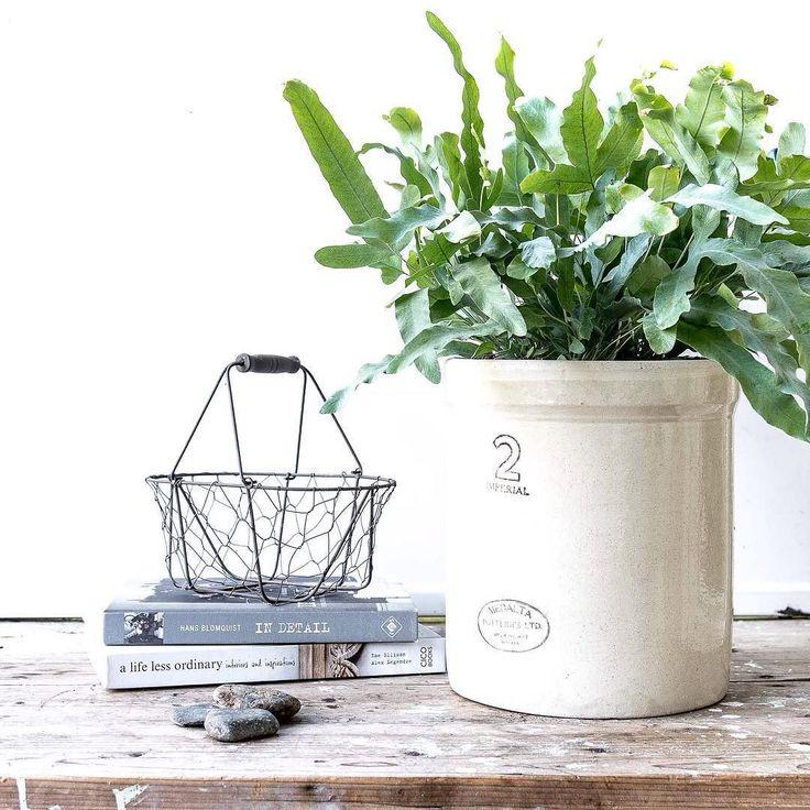 Ziemlich Küchendesign Plant Online Fotos - Küchen Ideen - celluwood.com