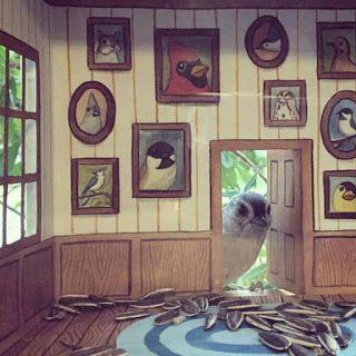 Elle crée de mignonnes petites maisons pour ses amis oiseaux [Amérique Animaux Architecture États-Unis Fabrication insolite Maquette Oiseau]