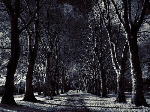 St Georges Park in the Snow - Bristol | by Benn Gunn Baker