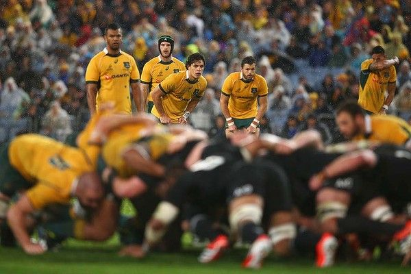Wallabies backline looks on as the scrum sets