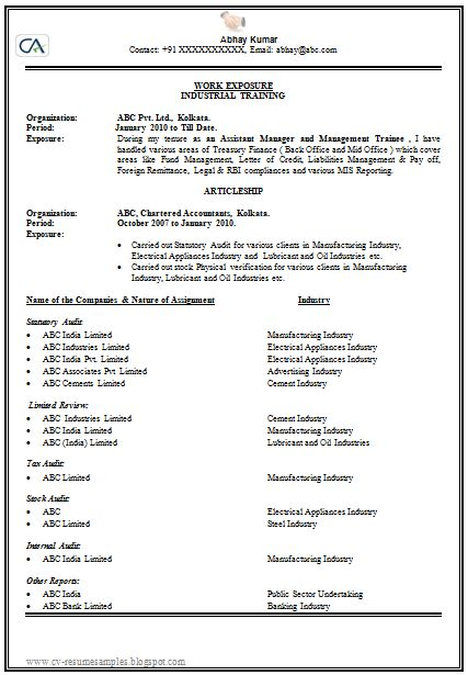 How To Make Or Write A CV Professional And Elegant 1