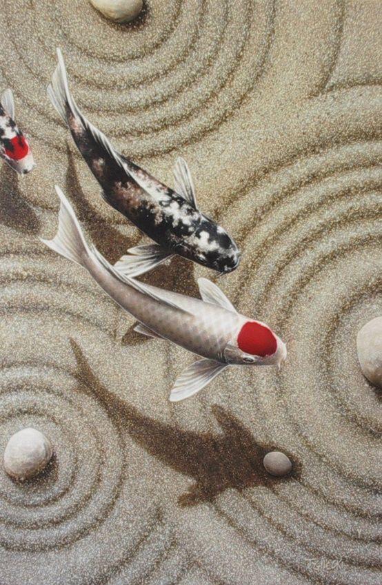 Koi - Migrate by Terry Gilecki
