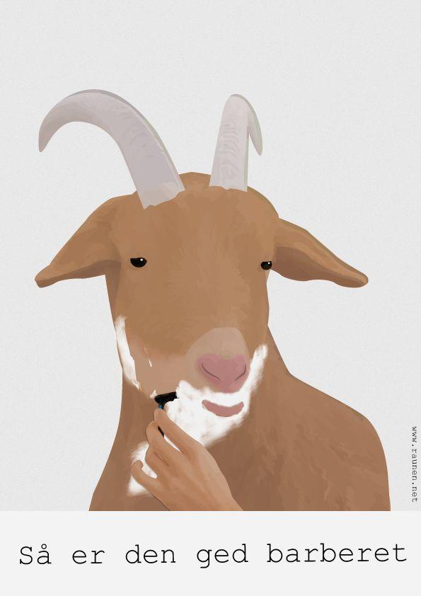 (2015-11) Så er den ged barberet
