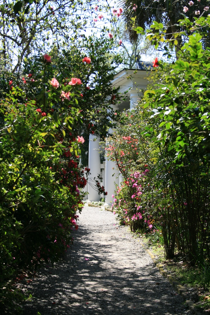 17 Best Images About Charleston Magnolia Gardens On Pinterest Gardens Wisteria And Spring