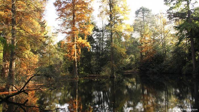 Ilha fluvial num afluente do rio Erft de origem ao nome da instituição