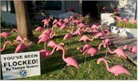 diy Flamingo Flocking Fundraiser