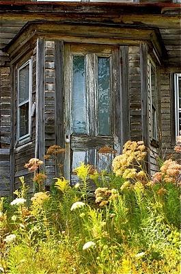 Awesome!  Abandoned home.