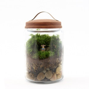 Twig Terrarium Boobies now featured on Fab.
