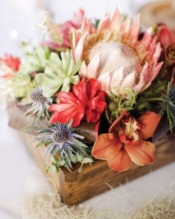 King protea, sea holly, succulents, red cone ginger, and cymbidium orchids are nestled in stained pine boxes