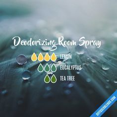 Deodorizing Room Spray - Essential Oil Diffuser Blend