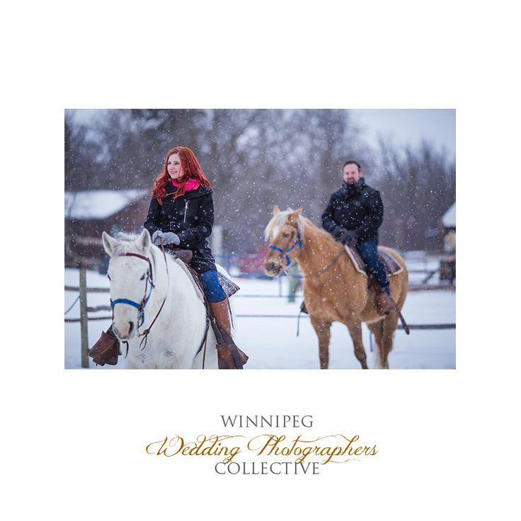 #Winnipeg #WinnipegWeddingPhotographer #WinnipegWeddingPhotographersCollective #TheCollective #Tony #Engaged #EngagementShoot #WinnipegEngagementShoot #EngagementShootWinnipeg #WinterEngagementShoot #WinterPortraits #WinterEngagementSession #Winter #Engaged #Engagement #Session #Snow #Snowy #Night #Dark #NightTime #Love #Outdoor #Horses #EngagementShootwithHorses