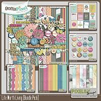 {Life Worth Living} Digital Scrapbook Bundle by Pixelily Designs available at Gotta Pixel http://www.gottapixel.net/store/product.php?productid=10017144&cat=&page=1 #digiscrap #digitalscrapbooking #pixelilydesigns #lifeworthliving