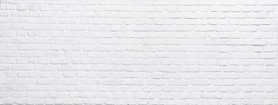 panel de Ladrillo macizo blanco