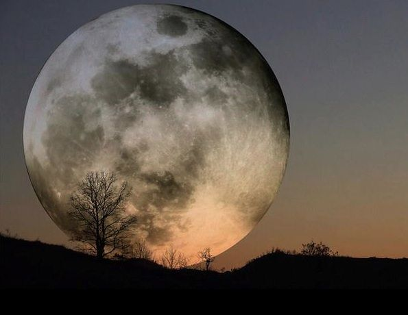 soooo cool: Harvest Moon, Sky, Super Moon, Fullmoon, Art, Full Moon, Things, Supermoon, Photo