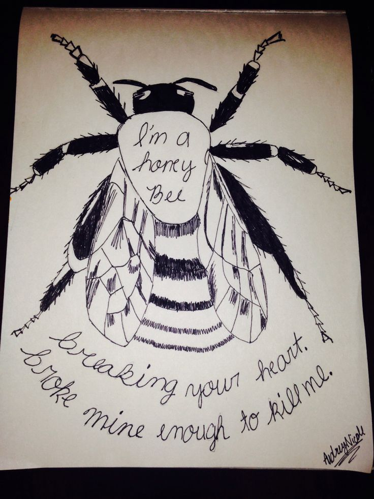 Seahaven//Honey Bee | Lyrics | Pinterest