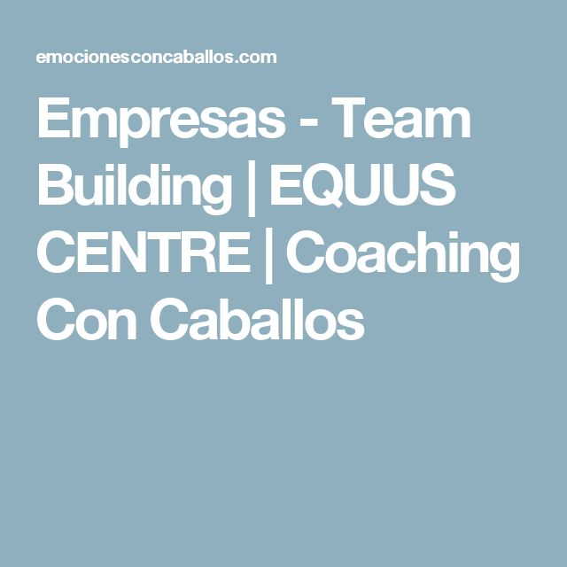 Empresas - Team Building | EQUUS CENTRE | Coaching Con Caballos