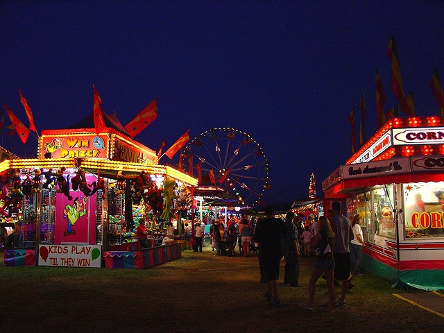 northwest washington fair, lynden washington