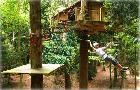 Tree House with Zip Line