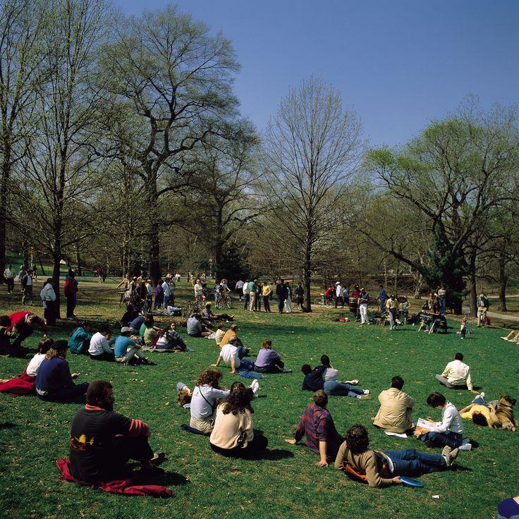 H.I.S. 【アメリカ】ニューヨーク / セントラルパーク -写真で見る世界の観光名所-
