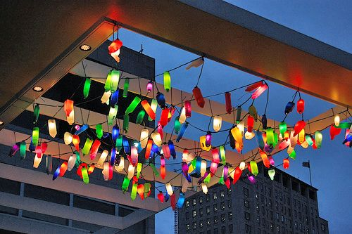 Who would believe these are just recycled plastic bottles on fairy lights.