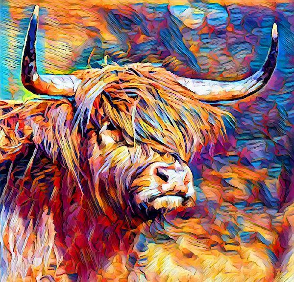 Greetings Card Birthday Highland Cow Hairy Shaggy Farm Animal Blank Notelet