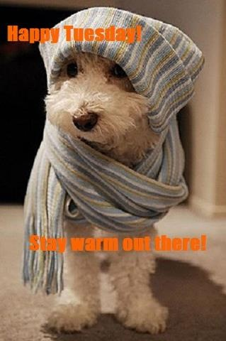 It's FREEZING today!! We're having record cold here. If you are also being smacked by Mother Nature, stay warm!!:
