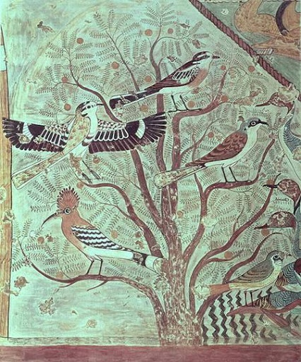 Birds in an acacia tree wall painting from tomb of for Beni hasan mural
