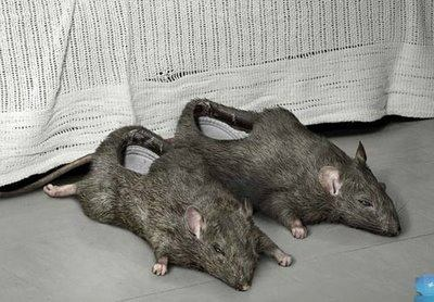 Rat Slippers...Gross!!!!! Some people...