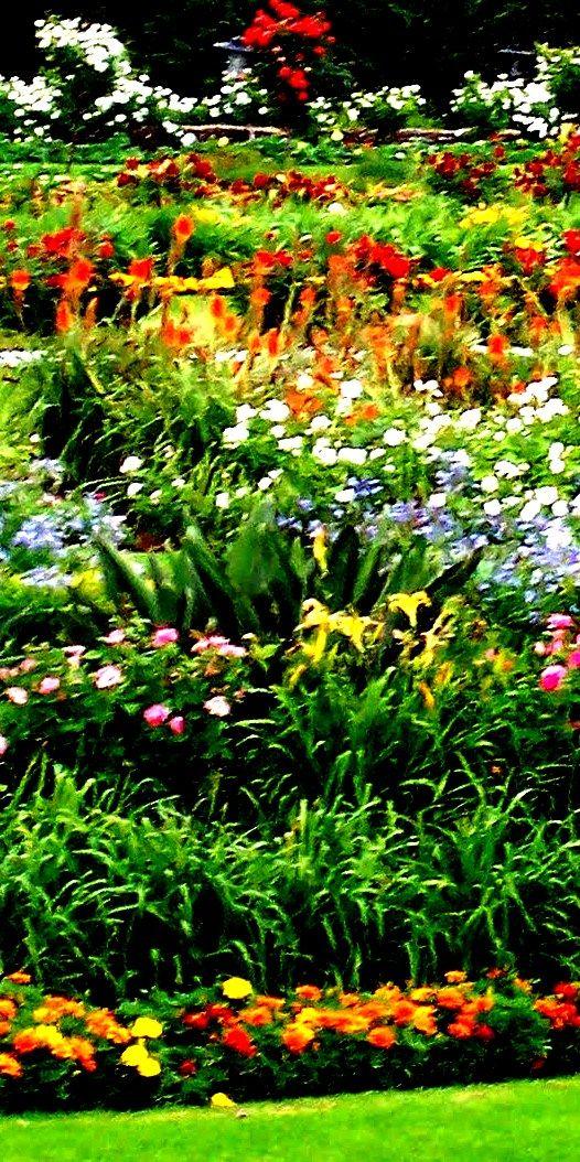 Gardens - Pretoria - South Africa