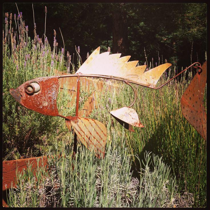 Scrap metal fish sculpture in the lavender for Daylight designs metal garden art