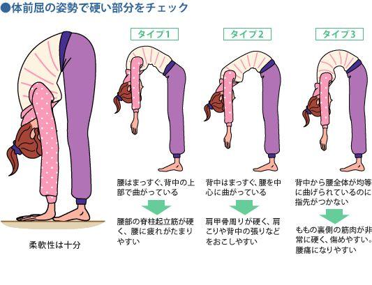 gooヘルスケア。体が硬い人は必見!体が柔らかくなるレベル別ストレッチ法。体前屈で柔軟性をチェック。タイプ別におすすめエクササイズを紹介
