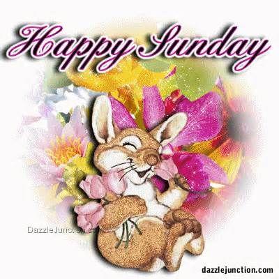 happy sunday -